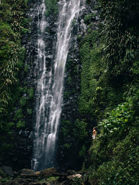 Waterfall in a Tropical Rainforest in Queensland